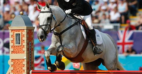 udea olympic 3.jpg