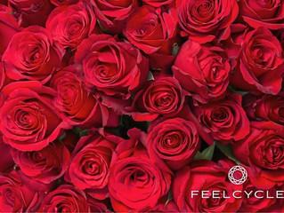 バレンタインデーに10,000本のバラを無料配布