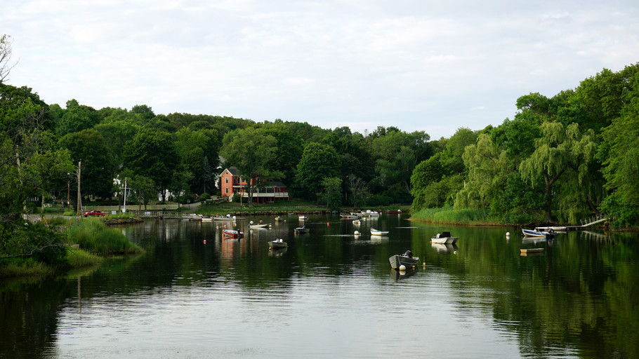 Ipswich River: Summer.jpg