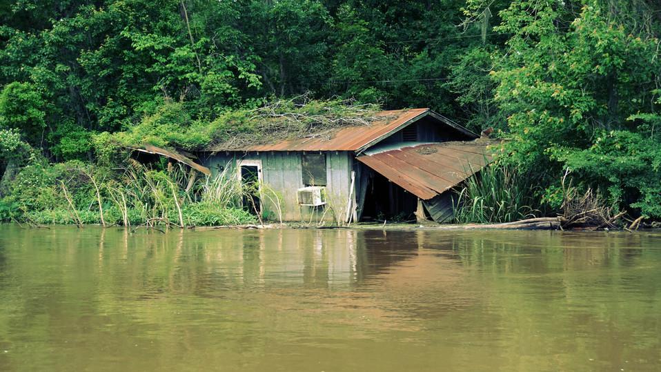 Swamp House I.jpg