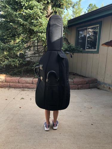 Yes...a walking cello case