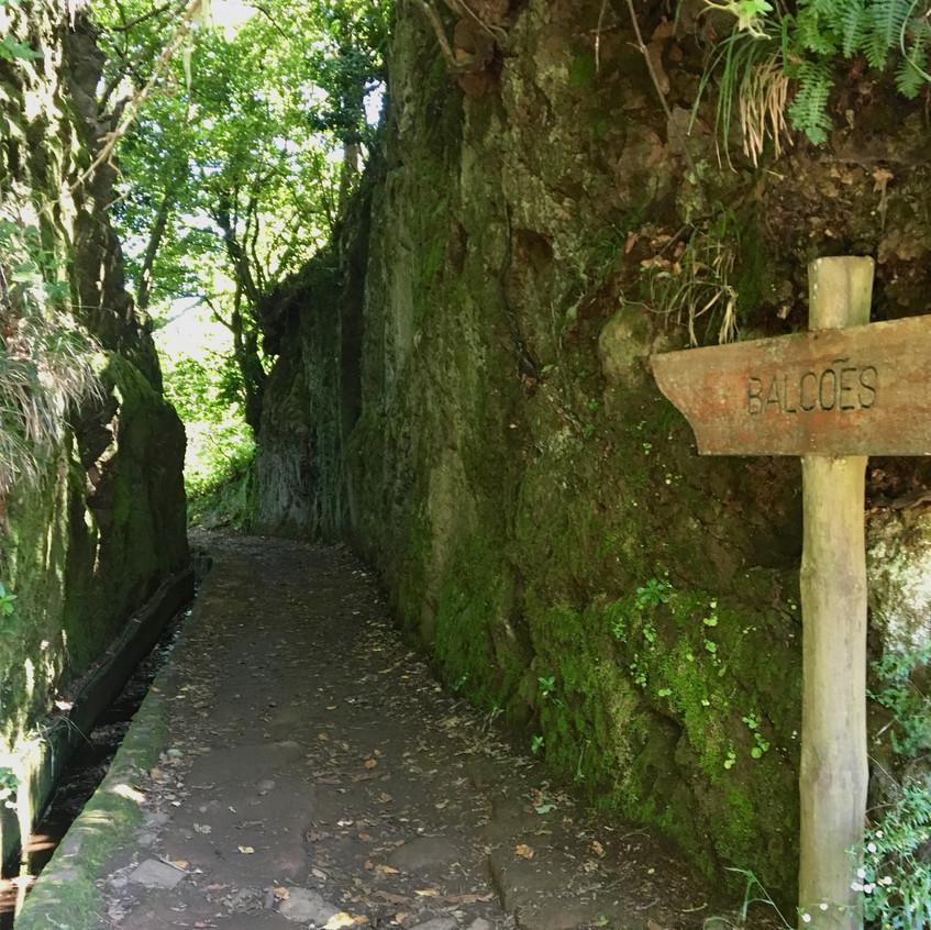 Balcões, Madeira, Portugal, Randomly Blogging Around