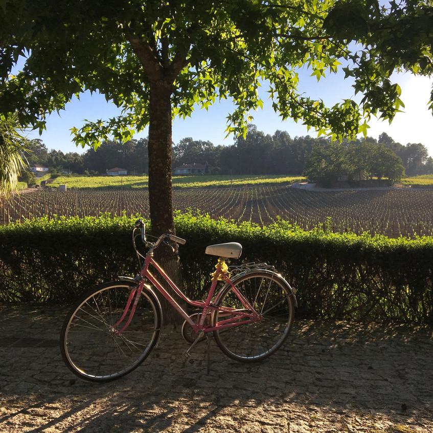Monverde wine hotel, Portugal, Randomly Blogging Around