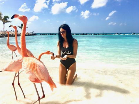 Chasing Sun & Flamingos in Aruba