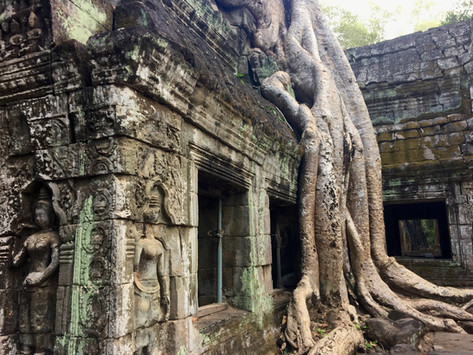 A day in Angkor Archaeological Park - Small Circuit