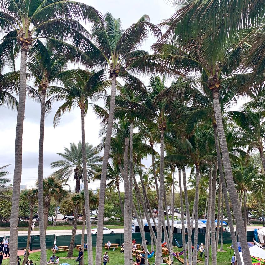 Miami, Randomly Blogging Around