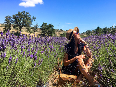 A day in Alentejo, Portugal - where lavender blooms and time goes by slowly