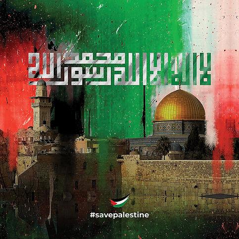 SV053 Palestine Preview 01 big.jpg