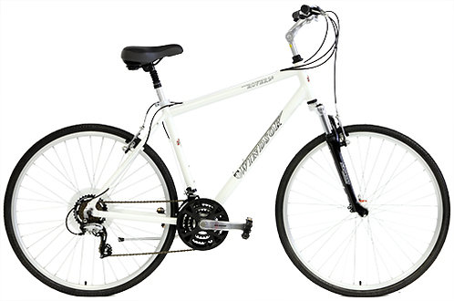 Adult Multi Speed Hybrid Bike