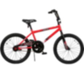 Boys 20 inch bike.jpg