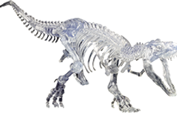 Dino-Skeleton.png