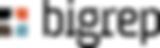 bigrep_logo.png