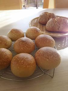 丸パンとブール,パン教室