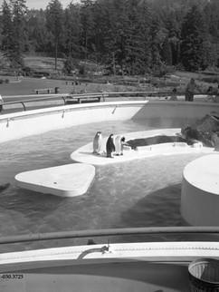 1961- Oregon Zoo