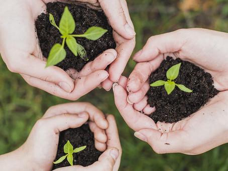 La CPME s'inquiète du projet de « délit d'écocide »