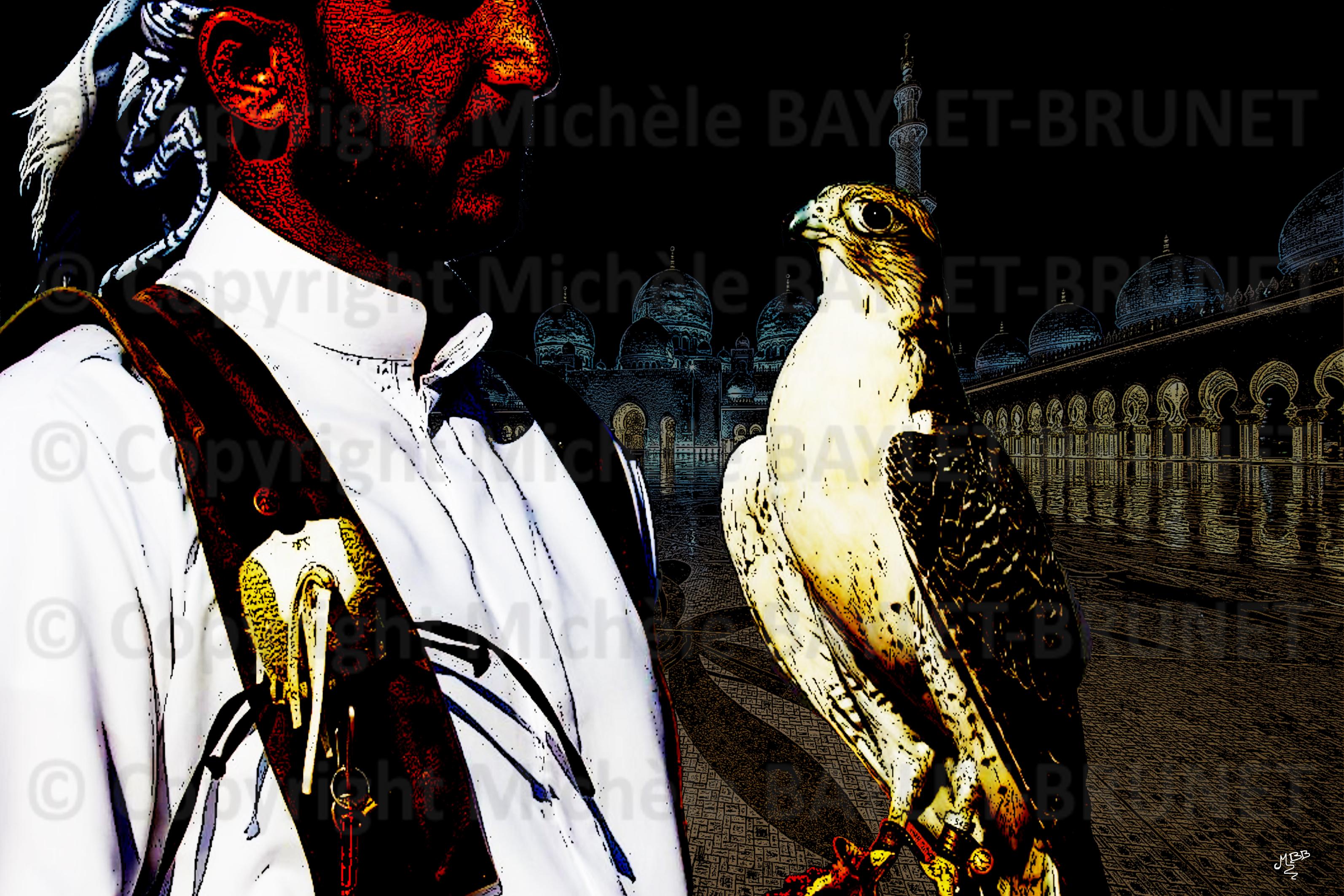 Au royaume des faucons