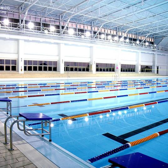 專業游泳池