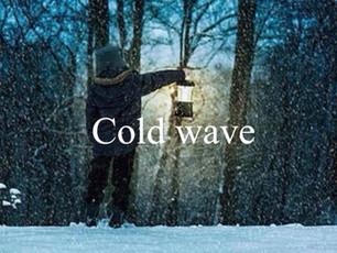 單字大補帖 |cold wave (寒流)