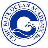 blue ocean academy BOA.jpg