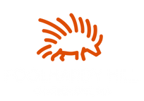 Color logo - no background(1).png