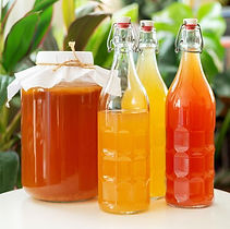 homemade-kombucha-tea-royalty-free-image