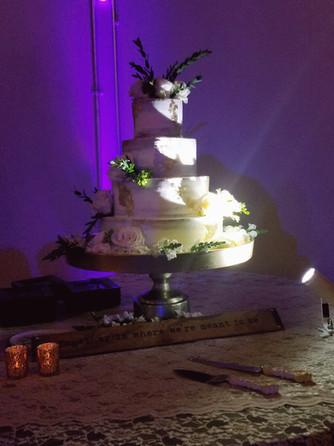 Cake Uplighting and Pin Lights