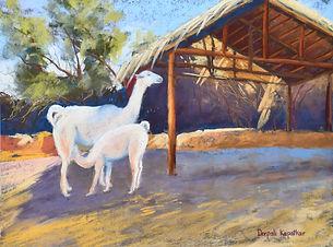 """""""Llamas of Cusco"""" by Deepali Kapatkar"""