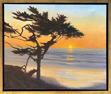 """""""Cypress Sunset"""" by Melissa Mandegarian"""
