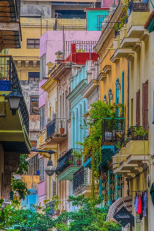 """Colors of Cuba"" by Patricia Dennis"