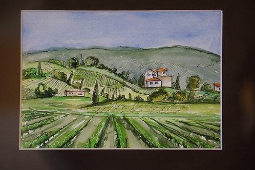 """""""Tuscany vineyard"""" by Majella Pinto"""