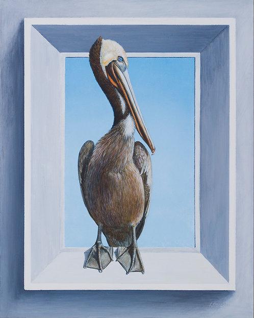 """""""Pelican Portal - Brown Pelican"""" by Kathy Kleinsteiber"""