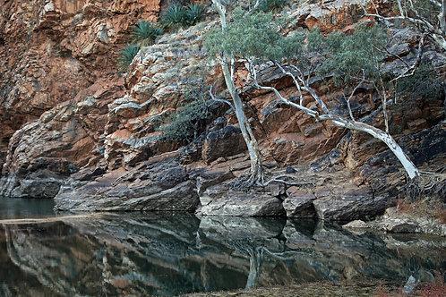 """""""Ellery Creek, MacDonnell Ranges"""" by Lynne Auld"""