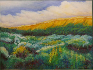 """""""Wildflowers Along the Butte"""" by Cathy Zander"""
