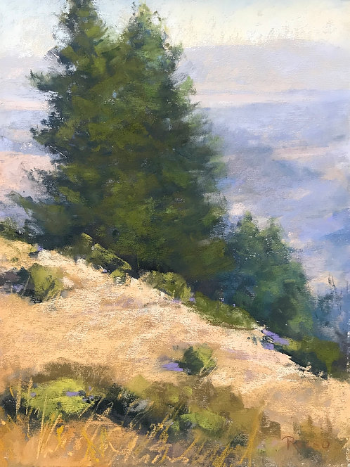 """Golden Hillside"" by Teresa Ruzzo"