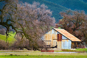 """""""Rusting Barn"""" by Larry Salveson"""