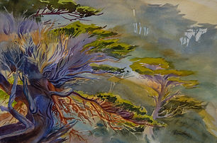 """Point Lobos Vision"" by Veronica Gross"
