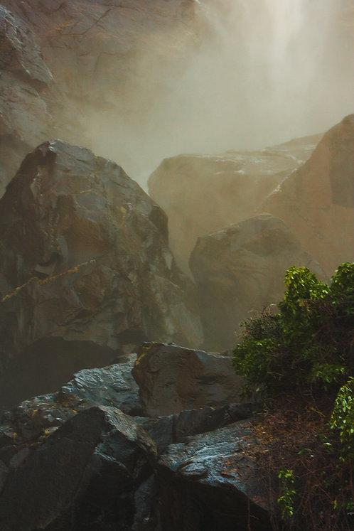 """Golden Light -Yosemite National Park"" by Shakun Maheshwari"
