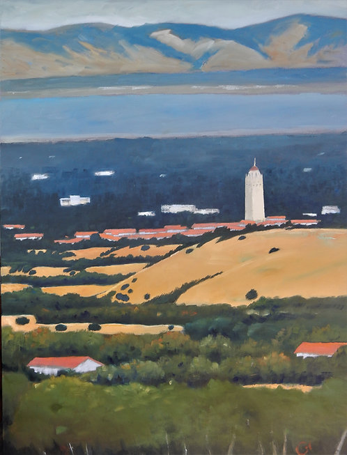 """""""Stanford from Hills"""" by Gary Coleman"""