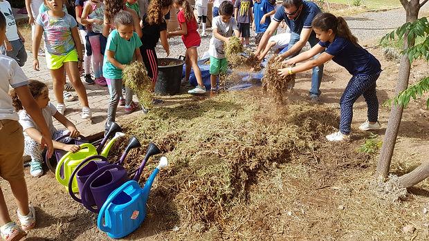 Compost et fertilité regeneration vegetaleregeneration vegetale engrais vert, plante permaculture, autonomie alimentaire, regeneration des sols, permaculture design