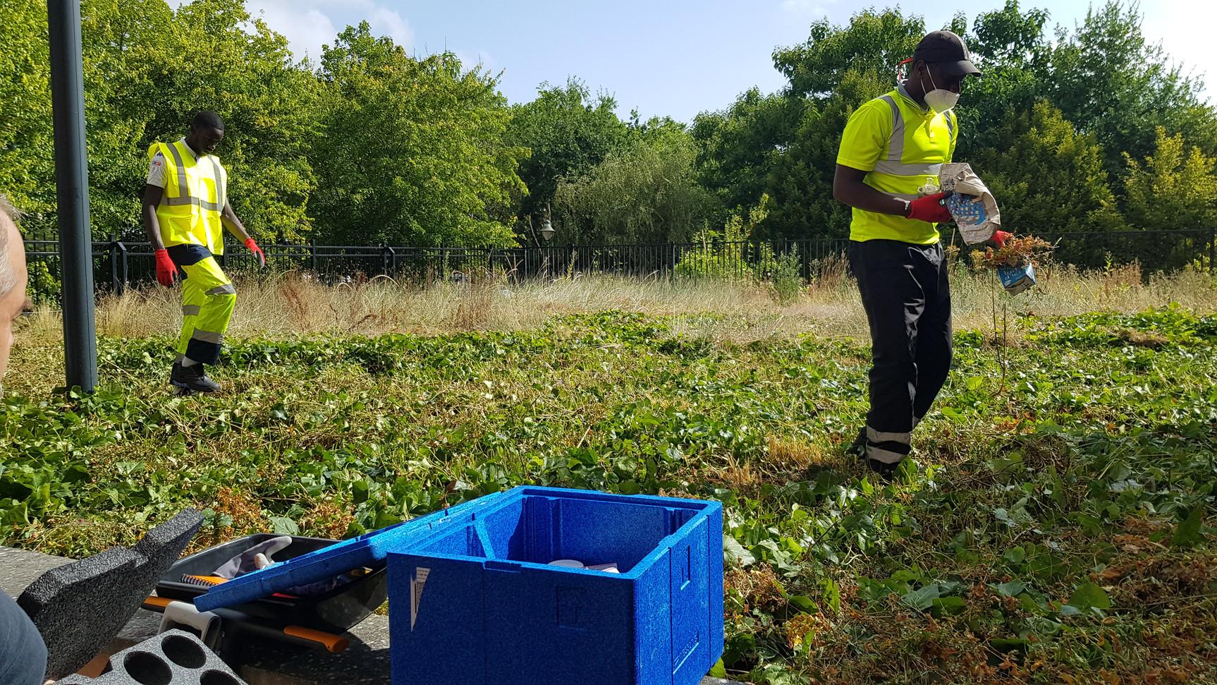 Nettoyage du site, analyse de pollution des sols à l'amiante
