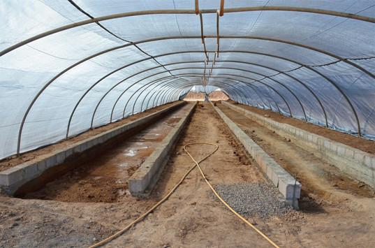 Serre 1 : lits de culture décaissés (en dessous du niveau du sol)...