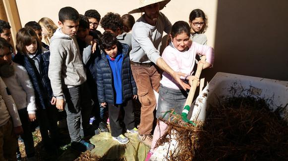 Entretien des vers par les élèves et recyclage des déchets de cuisine