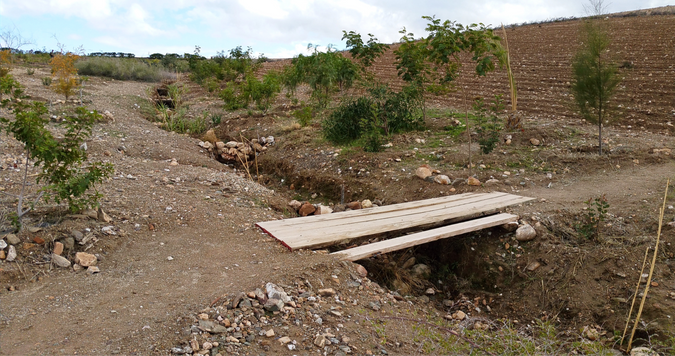 2 ans aprés,  les micro barrage en fonction dans le talweg...