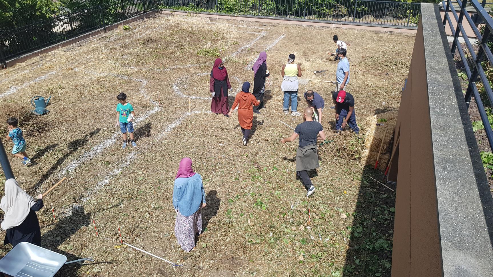 lancement du jardin thérapeutique, permaculture