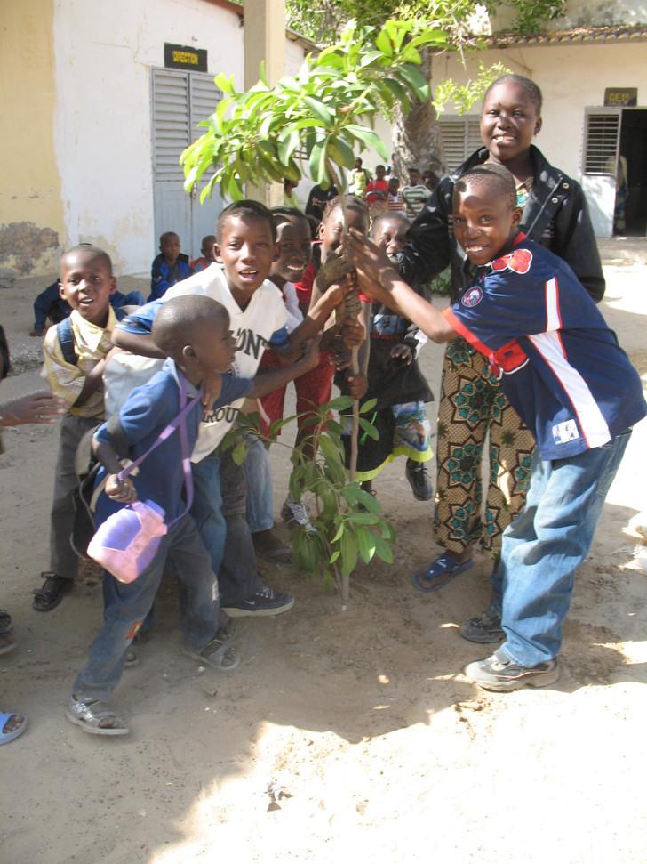 Les élèves fiers de leur arbre....