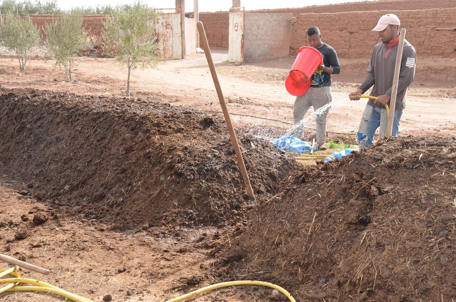 Activation du processus de compostage à chaud , il sera retourné 2 fois par mois...