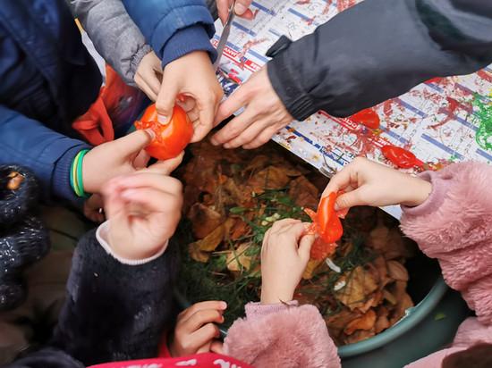 Recyclage des déchets à l'école, programme EDD/ E3D