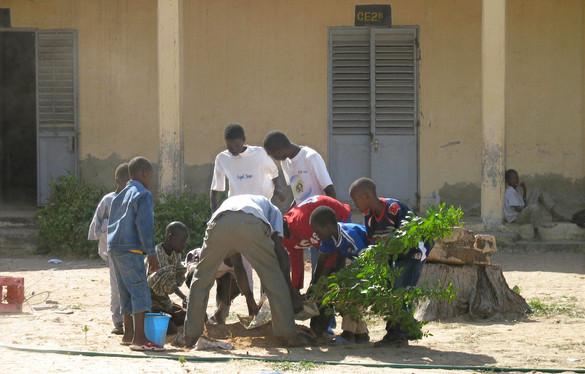 Atelier plantaion...