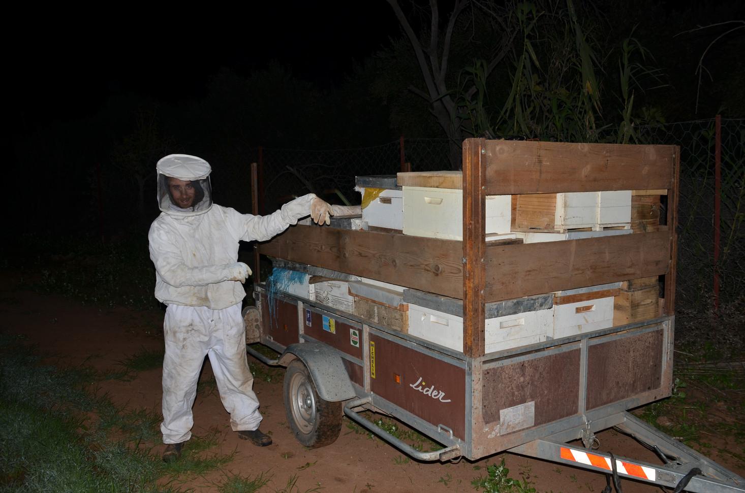 Installation des ruches de nuits...