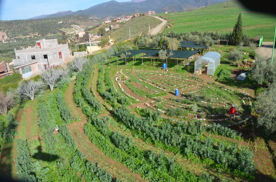 jardin ethnobotanique